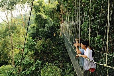 السياحة ماليزيا