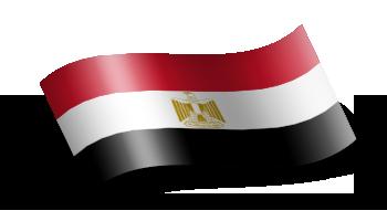 علم دولة مصر